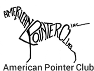american-pointer-club