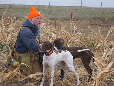 Pointers are great hunting companions